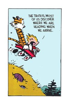 Calvin and Hobbes.jpeg 2